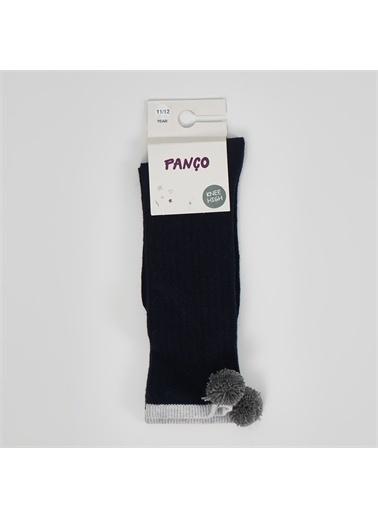Panço Kız Çocuk Tekli Çorap 19236821108 Lacivert